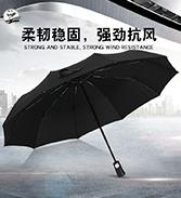 盈雨.全自动开收雨伞