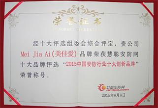 美佳爱荣获十大创新品牌证书副本