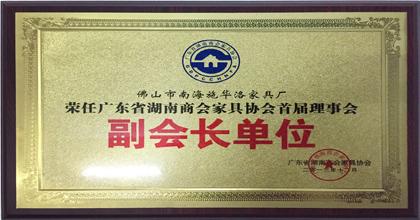 VOVO荣获湖南商会副会长单位