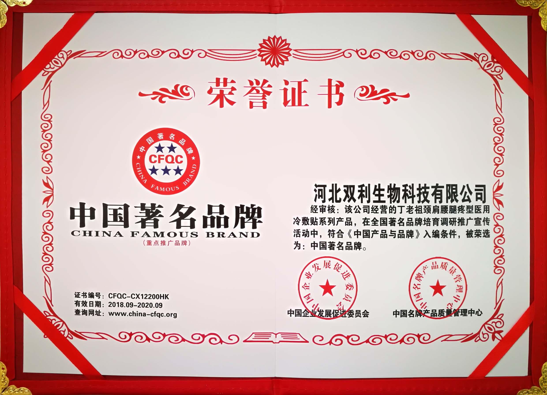 丁老祖荣获中国著名品牌