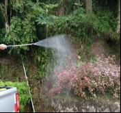 安然环境治理.森林病虫害防治