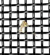 冀安筛网.电循磁金刚网