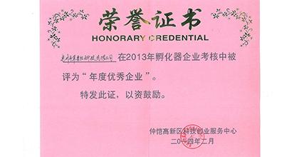 革普丝荣获2013年孵化企业年度优秀企业